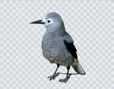 ペイント3dで背景が透過する画像の作り方 Microsoft ペイント